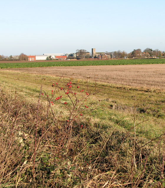Fields south of Upton