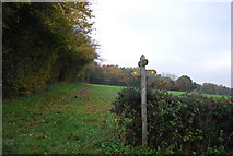 TQ5334 : Footpath junction, Sussex Border path, south of Bullfinches by N Chadwick