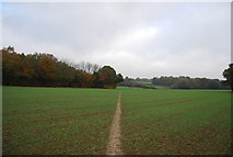 TQ5334 : Sussex Border Path heading north to Bullfinches by N Chadwick