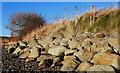 J4868 : Sea defences near Comber by Albert Bridge