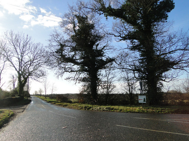 Junction on the B1117 to Hulvertree Farm