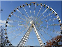 TQ2780 : Giant Observation Wheel in Hyde Park by Peter S