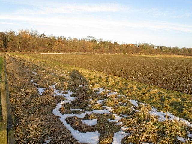 Ploughed field by Piercebridge Roman bridge