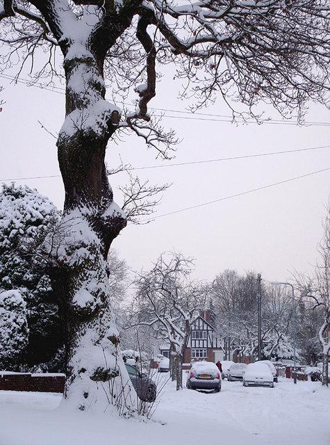 A snowy Buckingham Road in Penn, Wolverhampton