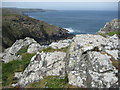 SW4238 : Rocks above the Cornish coast by Philip Halling