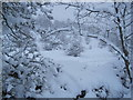 NY9269 : Snow Scene below Crag House by Les Hull