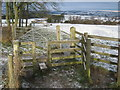 NZ1628 : Bridleway and footpath junction near Etherley by peter robinson