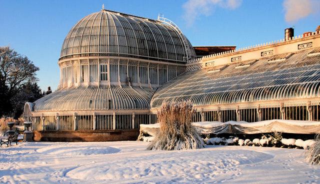 The Palm House, Botanic Gardens, Belfast (3)