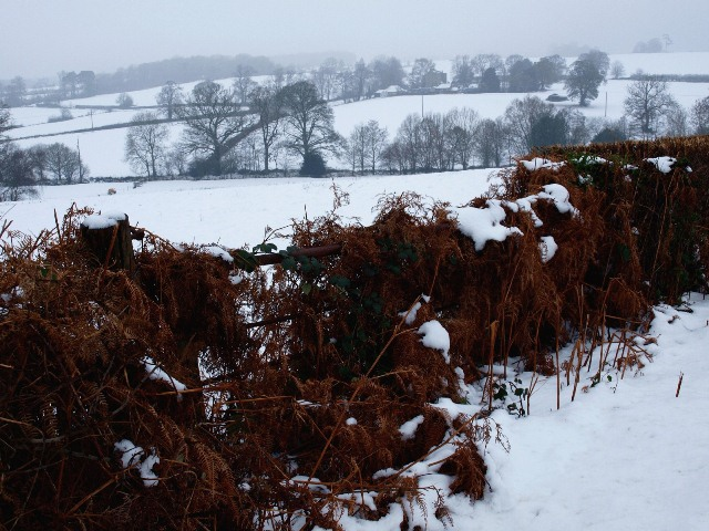 Pilstye Farm seen from the Cuckfield to Balcombe Road