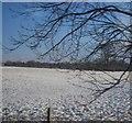 SJ9181 : Snowscape north of Adlington by N Chadwick