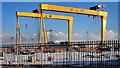 "J3575 : ""Samson"" and ""Goliath"", Belfast by Albert Bridge"