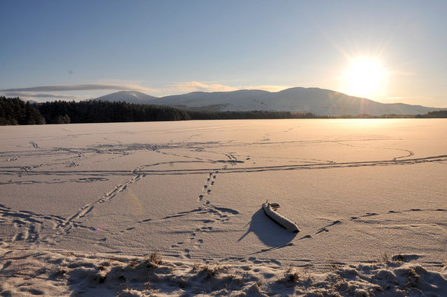 Frozen Loch Garten