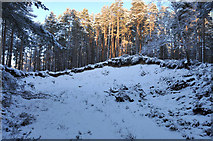NH9817 : Small gravel pit in Abernethy Forest by Steven Brown