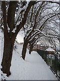 SX9193 : Exeter : Snowy Footpath by Lewis Clarke