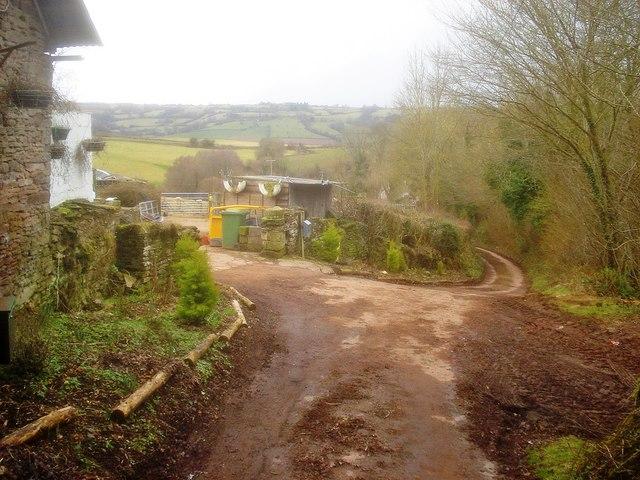 Muddy lane at Llanarch Farm