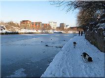 SJ8297 : Frozen canal by Jonathan Wilkins