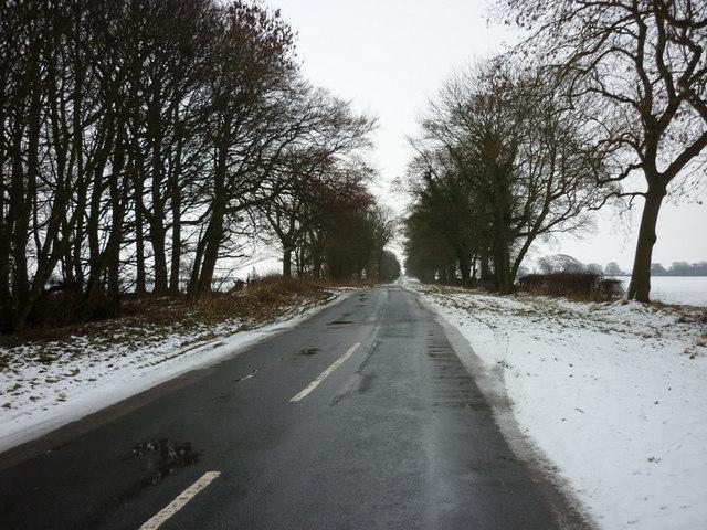 A minor road to Lockington