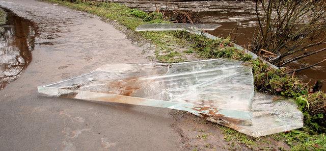 Ice, Lagan towpath, Stranmillis, Belfast (2)