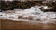 J3470 : Ice, River Lagan, Stranmillis, Belfast (4) by Albert Bridge