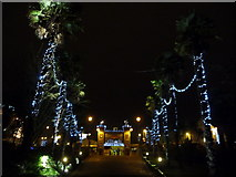 SZ0891 : Bournemouth: palms and lights on approach to The Square by Chris Downer
