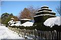 SO7640 : Iced topiary by Bob Embleton