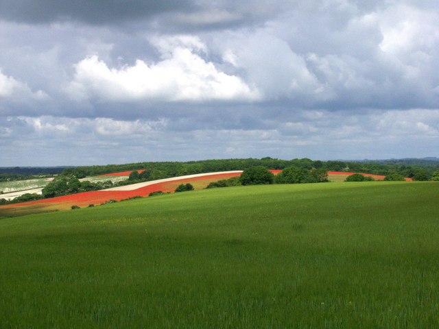 Land art south of Inkpen