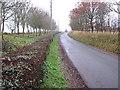 TM2180 : Tumbril Lane, Brockdish by Evelyn Simak