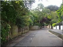 TQ1673 : Riverside, Twickenham by David Howard