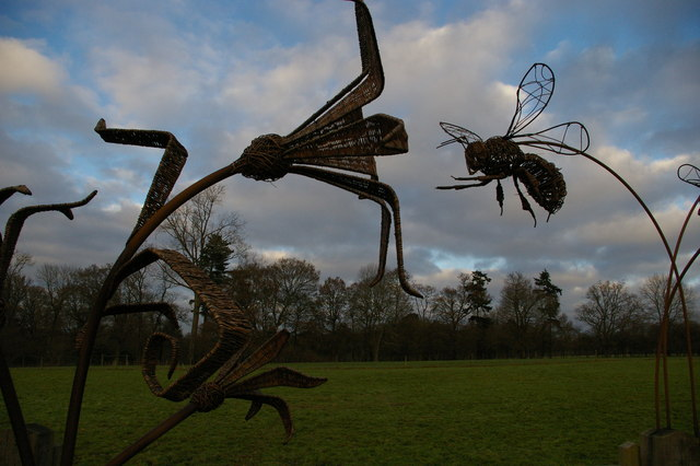 Sculpture, Wakehurst Place