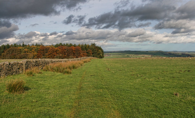 Byway to West Deanraw