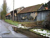TM0591 : Fen Street past High House Farm, Puddledock by Evelyn Simak