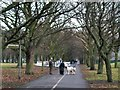 O1736 : Dog walkers in Fairview Park by Eric Jones