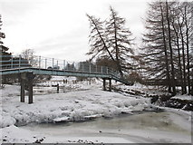 NY8450 : Snowy ford and footbridge on the River East Allen (2) by Mike Quinn