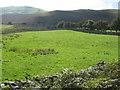 NY1425 : Farmland above Lorton by David Purchase