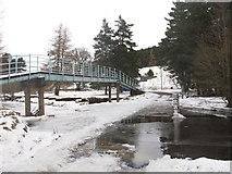 NY8450 : Snowy ford and footbridge on the River East Allen (3) by Mike Quinn