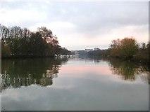 TQ1673 : The Thames below Eel Pie Island: looking downstream by Stefan Czapski