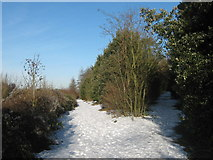 TR3051 : Bridleway junction beside the A256 Dover Road by David Anstiss