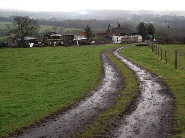 Higher Whitemoor Farm
