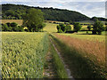 SP7701 : Farmland, Bledlow by Andrew Smith