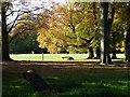 TQ1851 : Donkey Green at Box Hill - National Trust by Chris Slade