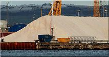 J3475 : Salt, Belfast harbour by Albert Bridge