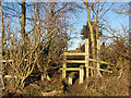 NZ2415 : Stile for footpath route to Morley Hill by peter robinson