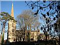 TF4411 : St Leonard's church in Leverington by Evelyn Simak
