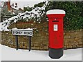 TQ0049 : Christmas postbox, Sydney Road by L S Wilson