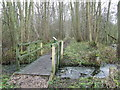 TL9293 : Footbridge by Keith Evans