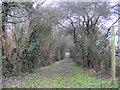 TM3470 : Bridleway to Lodge Farm & Mill Road by Adrian Cable