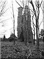 TL9995 : The ruin of St Andrew's church, Rockland All Saints by Evelyn Simak