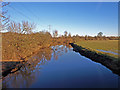 NS4467 : River Gryfe by wfmillar