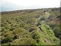 SO3024 : Path on Hatterrall Hill by Trevor Rickard