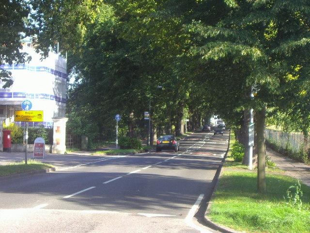 The Avenue, Bushey